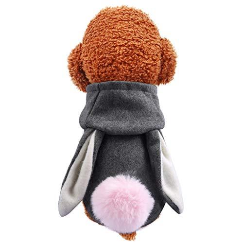 BBring Hase Kostüm mit Schwanz Ohr für