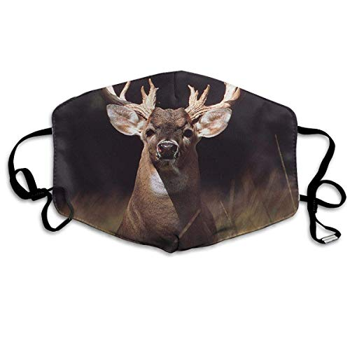 liulishuan Deer with Big Rack Dust Mouth Maske,Cartoon Anti Dust Pollution Maske with Adjustable Straps Cotton Mouth Maske - Flapper Hunde Kostüm
