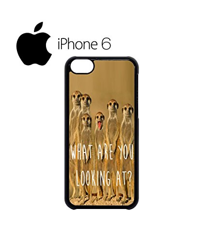 Meerkat What Are You Looking At Swag Mobile Phone Case Back Cover Coque Housse Etui Noir Blanc pour iPhone 6 White Blanc