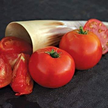 PLAT FIRM 1/8 m Samen von iletz Tomato Konventionelle & Organic