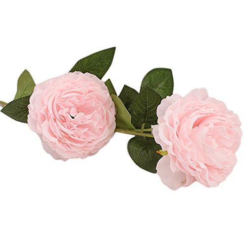 Lazzboy 1 Stück Pfingstrose künstliche Blume Latex Real Touch Braut Hochzeit Bouquet Home Decor Seide Künstliche Rose Blumen Brautstrauss Blumen(H)