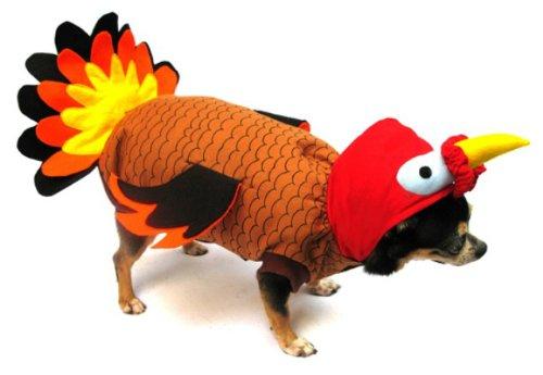 Dogs & co, costume natalizio per cani, vestito da tacchino, 25 cm, colore: arancione