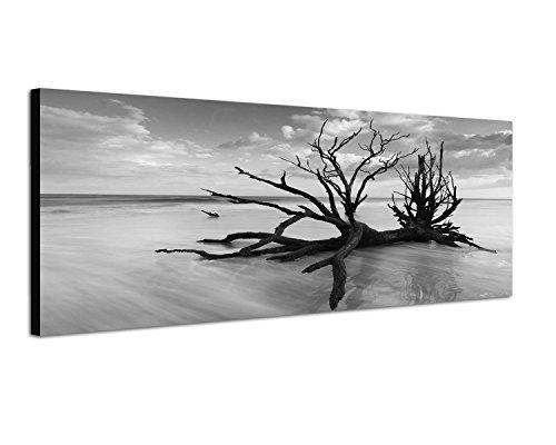 Keilrahmenbild Panoramabild SCHWARZ / WEISS 150x50cm Baum Geäst Nebel Wolken Himmel