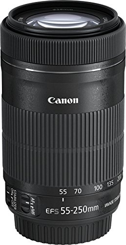 Canon EF-S 55-250mm 1:4-5.6 IS STM Tele-Zoomobjektiv - 3