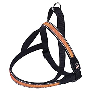 Nobby 78236 – Norwegian Harness Flash Mesh – Orange
