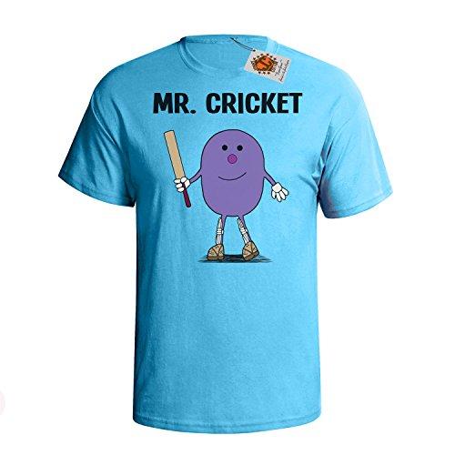 `Mr Cricket` mens herren Hobbies / Berufe perfect Cricketer gift t shirt Himmel Blau