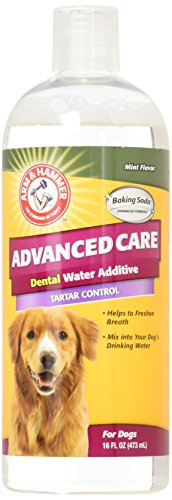 Arm & Hammer Advanced Pet Care Tartar Control Dental Water Additive – Mint Flavor 16 Fluid Ounces