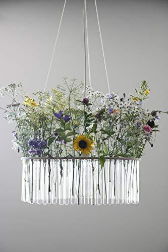 Pani Jurek Maria SC single test tubes chandelier glass transparent, natural 47 cm x 47 cm x 110 cm -