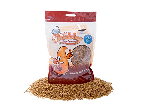 1kg-chubby-dried-mealworms-with-free-delivery-for-wild-birds-and-other-animals