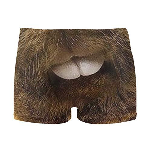 46d43337443b Mens Swim Trunks Lovely Animal Marmot Boxer Briefs Board Short Beach Shorts  Men Swimming Briefs Swimwear