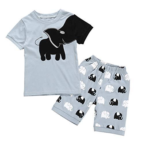 Fenverk Kurz äRmel Jungen Pajama Sets Baumwolle Kinder NachtwäSche Schlafanzug Feuerwehrauto/Dinosaurier/Bagger Kurzarm Pyjama Zweiteiliger Sommer Set(Grau-01,2-3 Jahre)