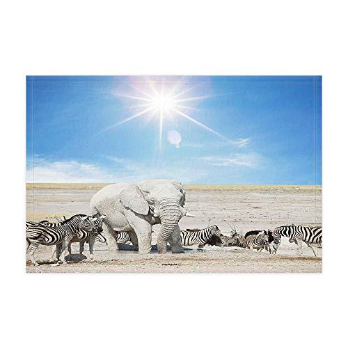 GzHQ Elefant Zebra Bad Teppiche Safari afrikanische exotische Wilde Tiere Elefant im Zebra mit Blauer Himmel Dusche Matte 15.7X23.6in Fußmatte für Home Decor Badezimmer Boden Teppich -