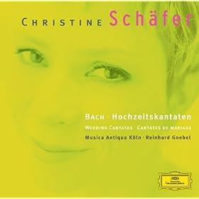 """J.S. Bach: Cantata, BWV 210 """"O holder Tag, erw�nschte Zeit"""" - 10. Aria: Seid begl�ckt"""