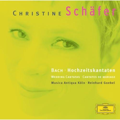 """J.S. Bach: Cantata No.202 """"Weichet nur, betrübte Schatten"""" (Wedding Cantata), BWV 202 - 2. Recit: Die Welt wird wieder neu"""