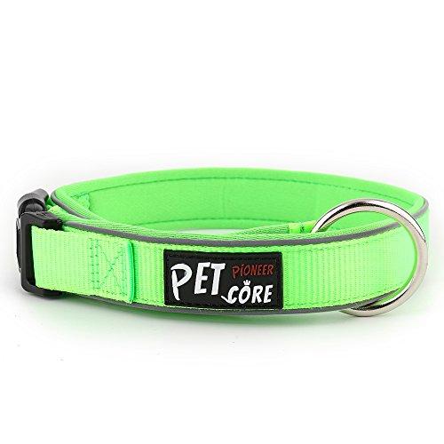 Pioneer Petcore Reflektierendes Hundehalsband, Neopren, gepolstert, für Laufen, hochwertiges Sport-Halsband, weich und bequem, für aktive Hunde, L |19.7-23.6