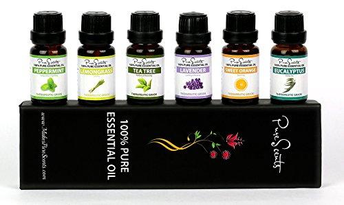 I migliori set regalo agli oli essenziali di Purescents, 100% puro, sei oli per l'aromaterapia da 10ml. Perfetto per uccidere i germi, cattivi odori e il cattivo umore, perfetto per un'esperienza rilassante e rigenerante.