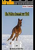 Ein Fohlen kommt zur Welt (Pferdeinternat Sankt Anna 29)