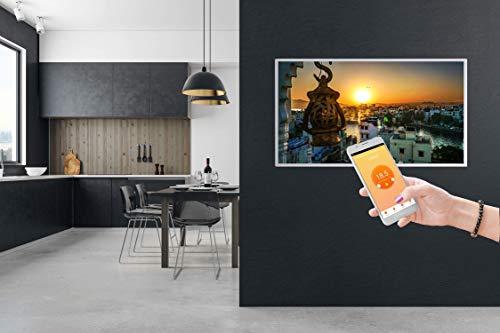 Könighaus Fern Infrarotheizung – Bildheizung in HD Qualität mit TÜV/GS – 200 Bilder – mit Thermostat 7 Tage Programm – 800 Watt (172. Trauben Auslese) Bild 2*