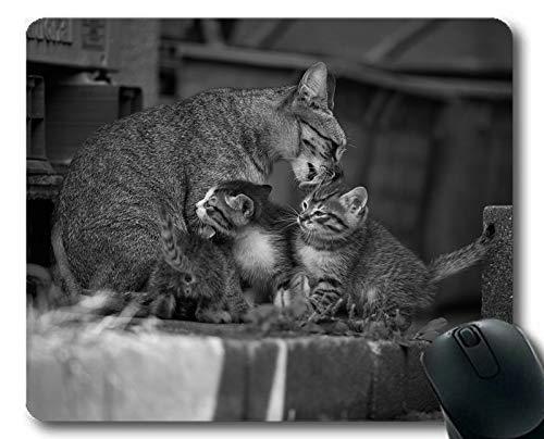 Gaming-Mauspad, Schwarze und weiße Mauspad des Kätzchens, Mauspad für Computer cat158 (Schwarze Kätzchen Kostüm)