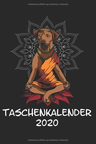 Taschenkalender 2020: Taschenkalender für Sept. 2019 bis Dezember 2020 A5 Terminplaner Wochenplaner Terminkalender Wochenkalender Organizer mit ... Buddha Zen Chakra Yin Yang Glaube Mandala