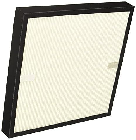 Delonghi AC100-AC250- filtre pour filtre à air (Large, filtre HEPA,