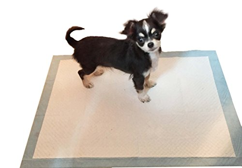 Super Absorbent Puppy Toilet Training Pads Large 60cm x 90cm by Easipet