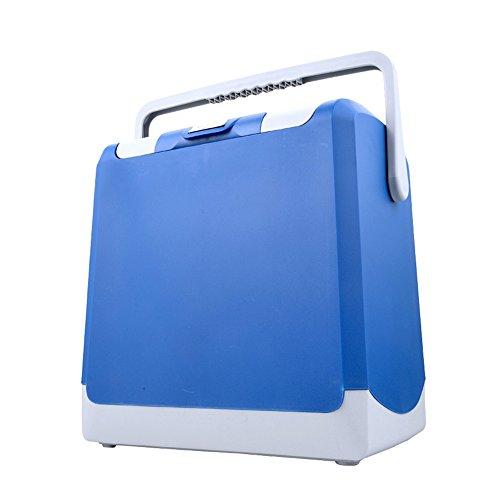 Liqicai frigo da campeggio borsa termica grande riscaldamento elettrico picnic 12v dc (auto)/24 v cc (camion)/230 v ac (casa) (colore : blue-24l, dimensioni : for car+home)