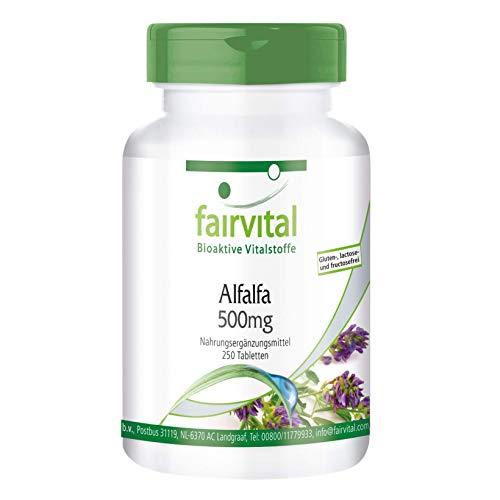 Alfalfa Tabletten - 500mg Alfalfa-Extrakt pro Tablette - Medicago sativa (Luzerne) - VEGAN - 250 Tabletten