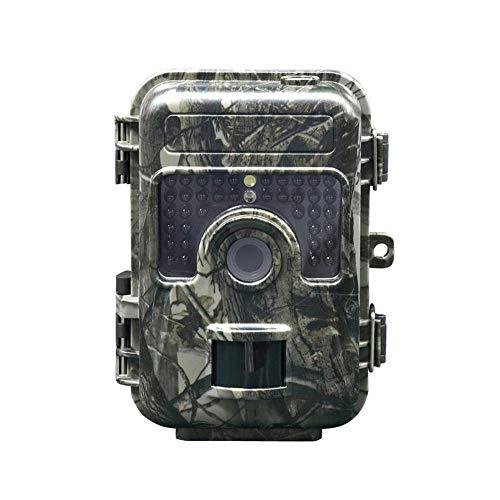Mr. Fragile Wildlife-Kamera, 16MP 1080P HD Wildlife-Kamera, jagende Scouting-Kamera mit aktivierter Nachtsicht-Bewegung, Wasserdichte IP66-Kamera,für Überwachung im Freien und Sicherheitsdienst