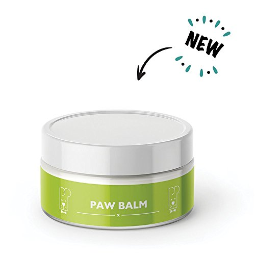 Pro Pooch Dog Paw Balm (100 ml) | Unscented, Non-Toxic & Lick Safe