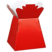 365 Floral and Craft Supplies Glossy Living Vase Flower Box Hand Tied Aqua Box, Presentation/Transporter Box (Red, 30)