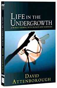 David Attenborough: Life In The Undergrowth - The Complete Seires [DVD]