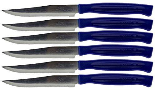 Coltelli kaimano da tavola per bistecca in acciaio inox lucidato con manico in plastica, forma appuntita, posate occidentali per cucina/hotel/ristorante/mensa/scuola/ecc blu 6 pezzi