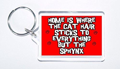 7acbf083a Casa es Donde el Pelo de Gato Pega a Todo lo Pero la Novedad Sphynx, el  regalo de gato sphynx más barato ⭐