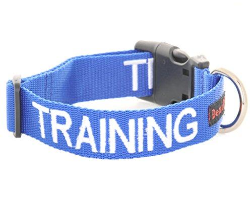 Ausbildung blau farbcodiert S M L XL Hundehalsbänder verhindert Unfälle durch andere im Voraus...
