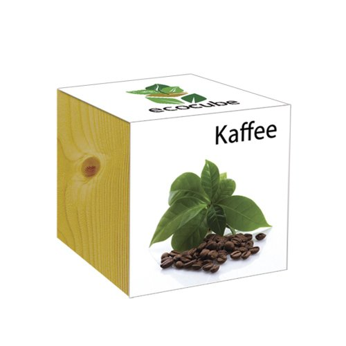 ecocube Holzwürfel - Kaffee