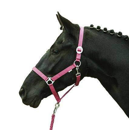 HKM Halfter -Stars Economy Softice-, Neon pink, Kaltblut