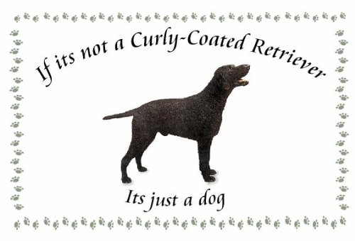 Curly Coated Retriever – Novelty Dog keyrings – If its not