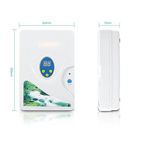 D&F Ozonator Ozone Generator - Purificador De Aire | Esterilizador Más  Limpio para Agua, Verduras, Frutas Y Más600 MG/H,S