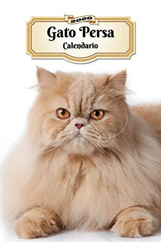 2020 Gato Persa Calendario: 107 Páginas | Tamaño A5 | Planificador Semanal | 12 Meses | 1 Semana en 2 Páginas | Agenda Semana Vista | Tapa Blanda | Gato