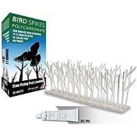 Pinchos Antipalomas Puas disuasorias para aves en policarbonato 3 Metros (10x30cm)