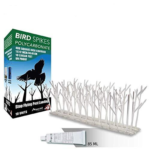Aspectek Sistema Anti pájaros - 10 hileras de Púas antipalomas con base de Policarbonato para control de aves y Palomas (con Transparent Silicone Glue)