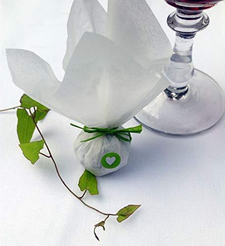 Die Seedball-Manufaktur Apfel Seedball Gastgeschenk mit Herz Weißes Seidenpapier mit hellgrüner Bastschleife 2,5 x 2,5 x 6 cm (Bezahlung Für Artikel In Den Warenkorb)