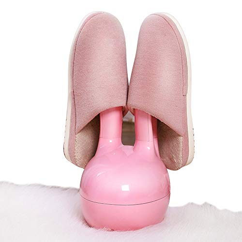 Secador de zapato eléctrico