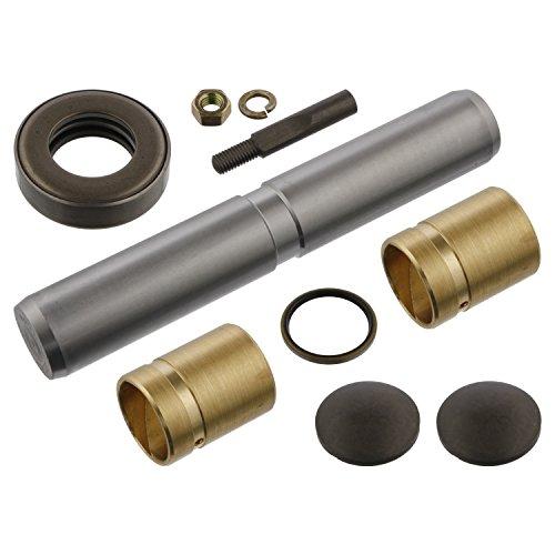 Febi-Bilstein 04295 Kit d'assemblage, pivot de fusée d'essieu