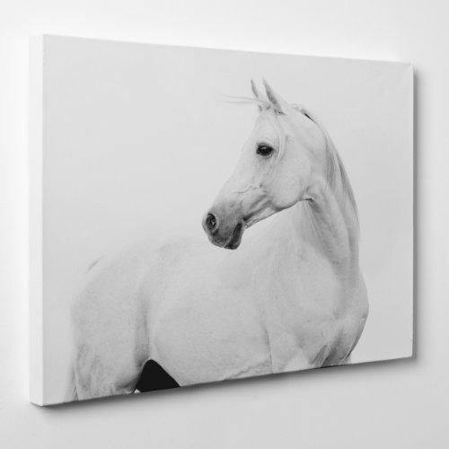 QUADRO MODERNO su Tela Canvas - Cavallo