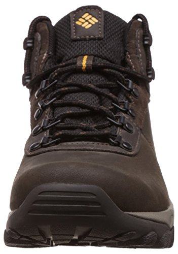 Columbia Newton Ridge Plus Ii Waterproof, Chaussures de Randonnée Basses Homme Multicolore - Multicolor (Cordovan/Squash)