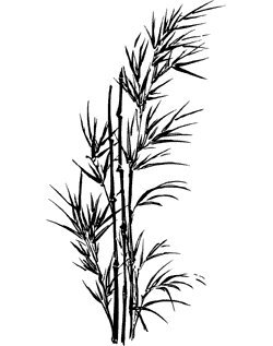 Motivstempel * Bilderstempel * Stempel * Bambus im Wind