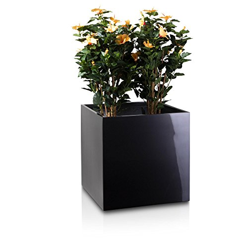 plant-pot-cubo-fibreglass-planter-flower-pot-colour-grey-metallic-finish-weather-and-frost-proof-ind