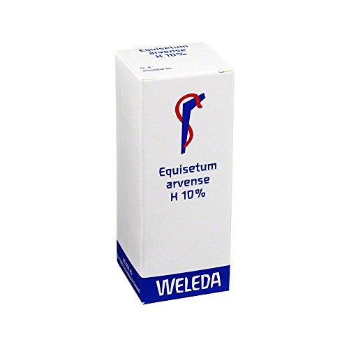 Equisetum Arvense H 10% Ölige Einreibung, 50 ml